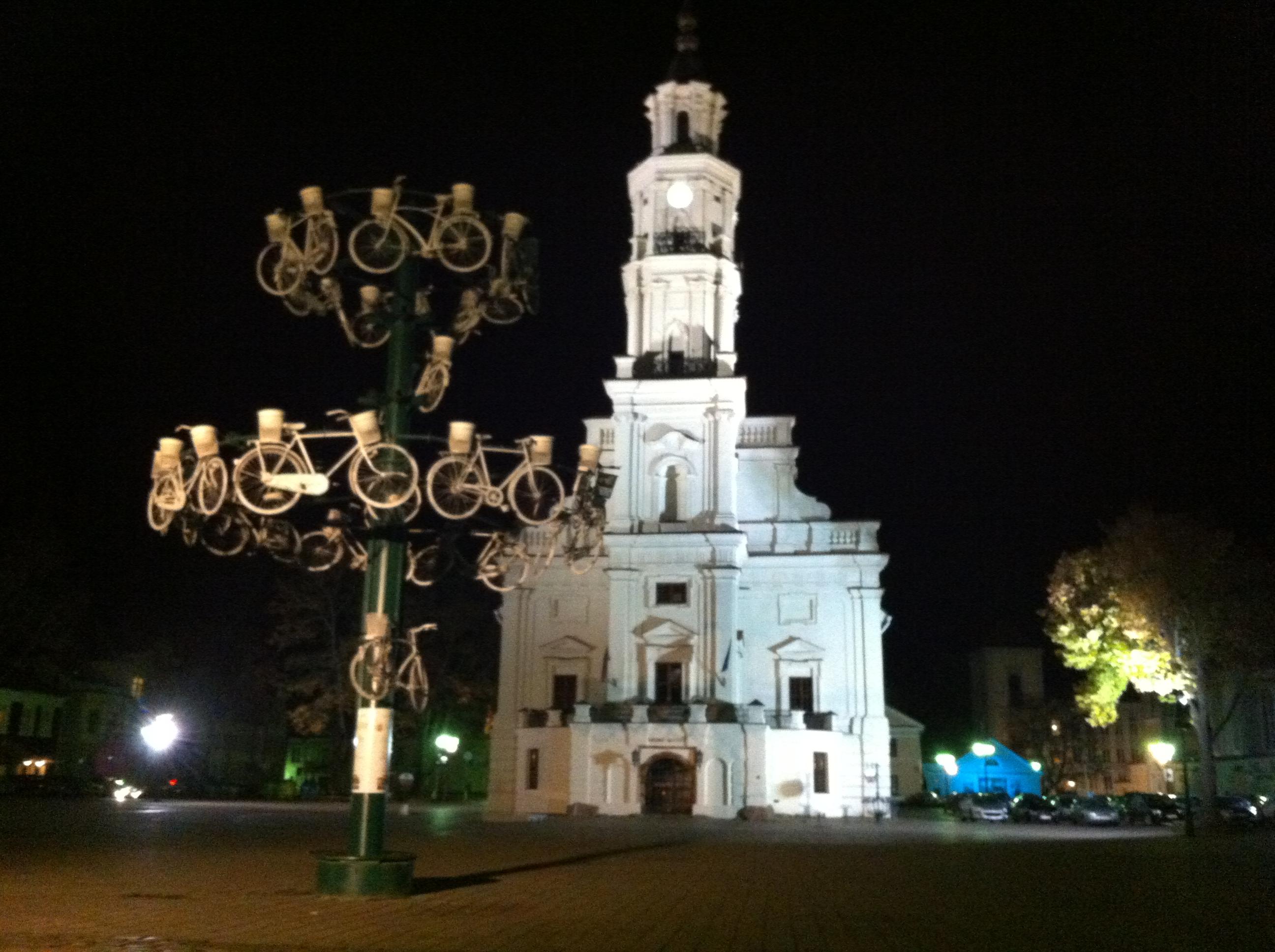 Kaunas pazinktevyne.lt (2)