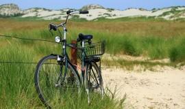 Kelionės Lietuvoje kelioniu organizatorius (74)