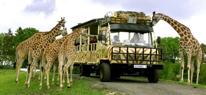 Serengeti-Park-Photo3